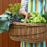 "Why ""growing your own"" isn't just about the produce"