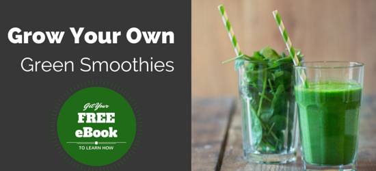 Grow Your Own Smoothies